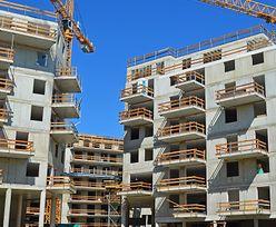 """Sytuacja na rynku mieszkaniowym w Polsce jest stabilna. """"Firmy deweloperskie są lepiej dostosowane"""""""