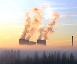 Wielkie firmy wiedzą, że szkodzą klimatowi. I wydają grube pieniądze, by przekonać nas, że jest inaczej