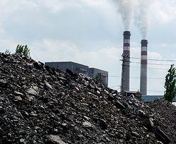 Węgiel z Rosji zasypie świat. Putin szykuje nową strategię