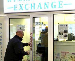 Kursy walut. Prognozy sugerują, że złoty póki co najgorsze ma za sobą