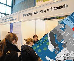 Bezrobocie mniejsze o jedną ósmą. Polska prymusem, słabość Szwecji i Turcji