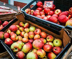 Koronawirus. Owoce i warzywa bezpieczne, ale może być problem z ich dostawami