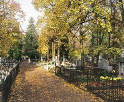 Cmentarz Bródnowski. Jak dojechać w czasie świąt
