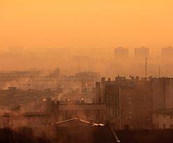 """Walka ze smogiem. Solidarność: """"Program nie działa, wymaga gruntownych zmian"""""""