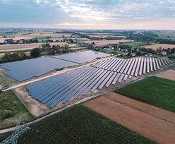 PGE buduje największą farmę fotowoltaiczną w Polsce. Dziesięć hektarów paneli słonecznych