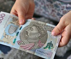 Banknoty 500 zł w powszechnym obiegu. NBP przypomina, że można nimi płacić