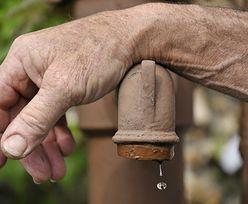 Susza. W Niemczech może zacząć brakować wody