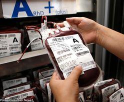 Centrum Krwiodawstwa posłużyło do wyciągania pieniędzy. Po kontroli NIK dyrektor stracił stanowisko
