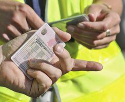 E-prawo jazdy jeszcze w tym półroczu. Jest zapowiedź ministra cyfryzacji