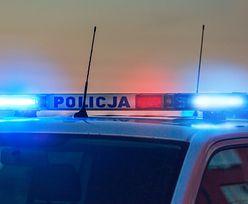 W wypadku lotniczym pod Ostródą zginął właściciel piekarni z Nowego Dworu Mazowieckiego