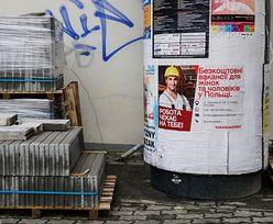 Imigranci łatwo znajdują pracę w Polsce. Niemcy i Włosi powinni przyjeżdżać na szkolenia
