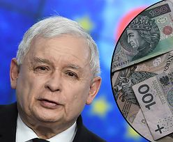 Wyniki wyborów dla PiS, czas na obietnice wyborcze. Seniorzy dostaną po 10 tys. zł