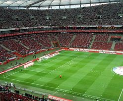 Narodowy wyciąga wnioski z afery o murawę. Piłkarze dostaną nową trawę