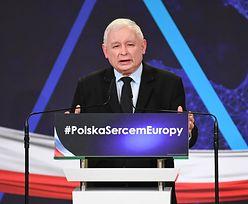 """Euro w Polsce. Eksperci widzą w deklaracjach PiS kontekst wyborczy. """"Polskie ZOO"""""""