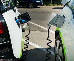 PKP chcą współpracować z branżą car-sharingową. Pilotażowy program