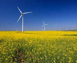 Przydomowe elektrownie wiatrowe