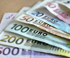Bezwarunkowy dochód podstawowy w Niemczech. 400 euro za nic