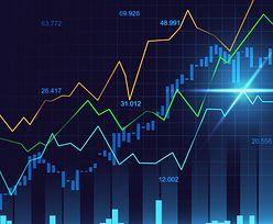 Forex – brokerzy i ich wiarygodność