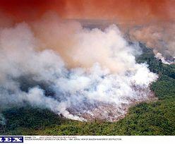 #UgaśmyPłucaŚwiata. Pożar w Amazonii. Unia grozi Brazylii konsekwencjami, a Trump wspiera
