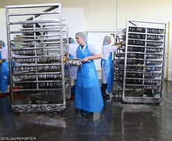 Bezrobocie w Polsce. Mamy nowy rekord