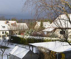 Susza w Polsce. Choć mamy zimę, już jest bardzo źle