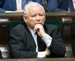 Kaczyński kontra Birgfellner już we wtorek. Giertych: dla Kaczyńskiego lepiej, gdyby doszło do ugody
