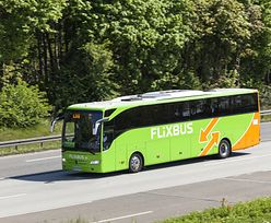 FlixBus. Bilet u kierowcy na wszystkich połączeniach