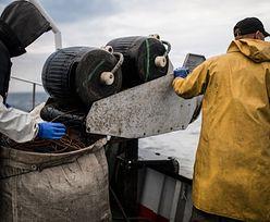 Połowy dorsza. Będzie pomoc dla rybaków dotkniętych zakazem