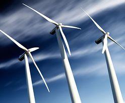 Bańka giełdowa na energetyce odnawialnej. Nawet 2000 procent wzrostu w styczniu