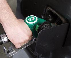Ceny paliw w górę? Znamy prognozy cen na polskich stacjach