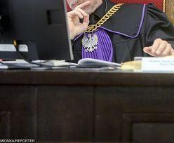 Prokuratura prześwietla ceny usług syna posłanki PiS. Ma podejrzenia co do ich wysokości