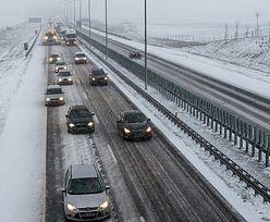 Podwyżki na autostradzie A2. Od stycznia więcej zapłacą kierowcy ciężarówek