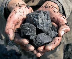 Nowy program dla górnictwa. Plan wydobycia węgla kamiennego do weryfikacji