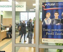 Profil Zaufany zyskuje popularność. Ma go już 5 milionów Polaków