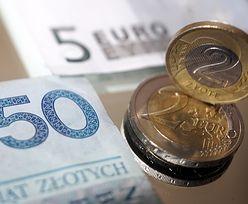 Kurs złotego zyskuje. Nasza waluta korzysta z lepszych nastrojów na rynku