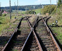 Pociągi dojadą do małych miasteczek. Znamy szczegóły programu Kolej+