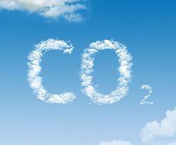 Wyniki PGE. Miliard poszło na uprawnienia CO2 w jednym kwartale