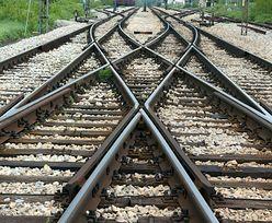 Nowe trasy, szybsze pociągi. PKP PLK modernizuje linie kolejowe w całej Polsce