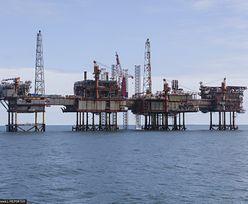 Ceny ropy w górę. Rynek reaguje na pozytywne sygnały
