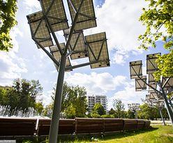 Energa postawi farmę fotowoltaiczną. Zamontuje prawie 70 tys. paneli słonecznych