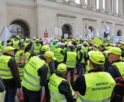 Weterynarze zablokują drogi i będą głodować. Walczą o obiecane 40 mln zł