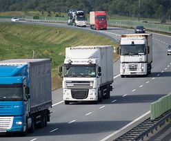 Wymiana handlowa Polski. Co trzeci polski produkt eksportowy jedzie do Niemiec