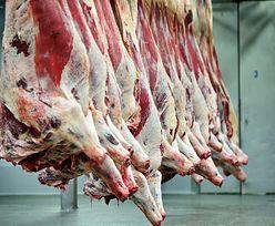 Kolejne państwa odnajdują u siebie niebezpieczne mięso z Polski. Wciąż brakuje pół tony
