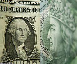 Kursy walut. Skup obligacji przez NBP nie pomógł rynkowi