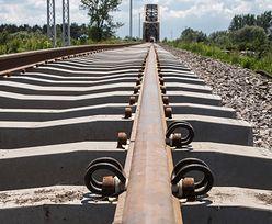 Rail Baltica. Polsko-chińskie konsorcjum uznane za najlepsze, choć oferta znacznie przekracza budżet