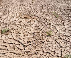 Polska wysycha. Brak wody już widać na wsi