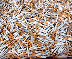 Akcyza na tytoń wciąż nieznana. Wiadomo jedno: papierosy zdrożeją
