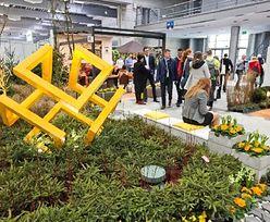 Największe wydarzenie w branży ogrodniczej. Premierowe produkty po raz pierwszy w Polsce
