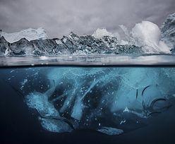 Góra lodowa lekarstwem na brak wody. Nietypowy pomysł arabskiego biznesmena