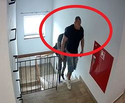 """""""Nalot"""" Pudzianowskiego na hostel. Po publikacjach money.pl, sąd staje po stronie przedsiębiorcy"""